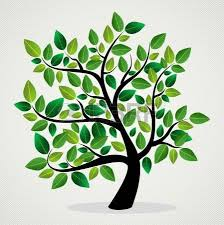 Images genealogie
