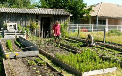 Jardin potager du roseau